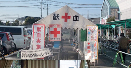 2010年献血事業イメージ1