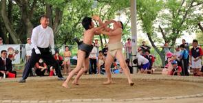 2013年わんぱく相撲イメージ3