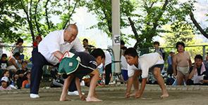 2014年わんぱく相撲イメージ2