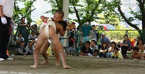 2014年わんぱく相撲イメージ3