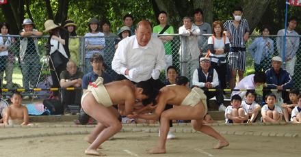 わんぱく相撲開催イメージ