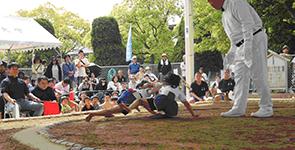 2019年わんぱく相撲イメージ3